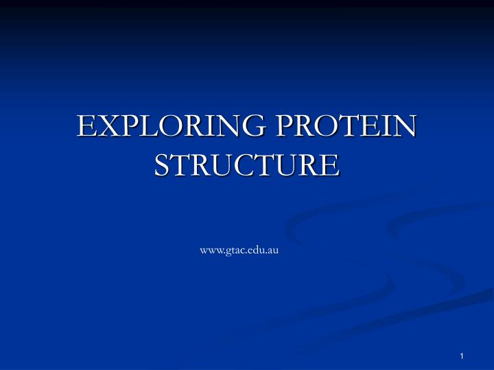 exploring protein structure n.