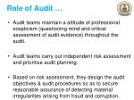 role of audit1