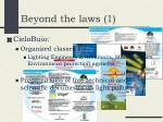 beyond the laws 1