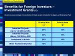 benefits for foreign investors investment grants