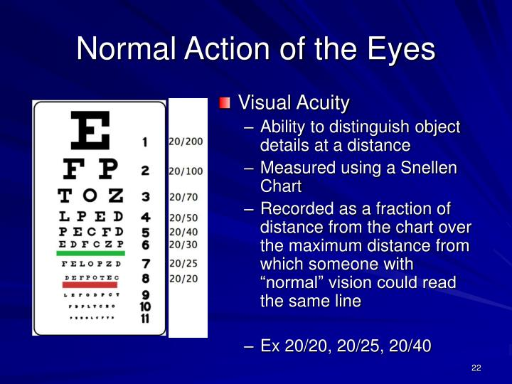 Normal Action of the Eyes
