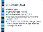 choroid coat