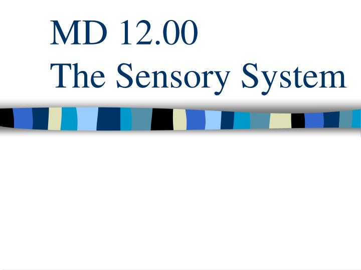md 12 00 the sensory system n.