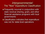 intergovernmental the new expenditure classification