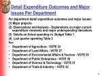 detail expenditure outcomes and major issues per department