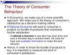 the theory of consumer behaviour1