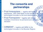 the consortia and partnerships