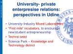 university private enterpresise relations perspectives in udine