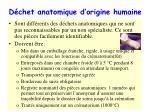 d chet anatomique d origine humaine