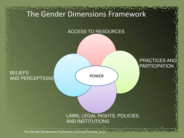 The Gender Dimensions Framework