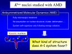k bar nuclei studied with amd