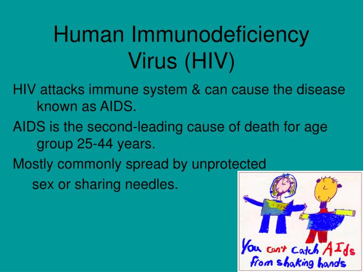 a description of the incurable hiv virus caused by acquired immune deficiency syndrome Aids (acquired immune deficiency syndrome) dept of infectious disease xiaoguang dou definition sever &amp often fatal chronic disease hiv (human immunodeficiency virus) cd4+t lymphocyte opportunistic infection &amp malignant tumor sexual contact &ampinjection transmission.