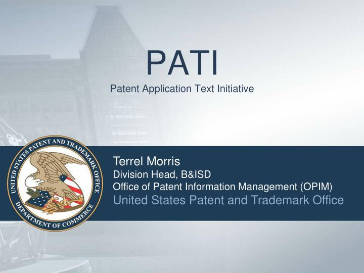 pati patent application text initiative n.