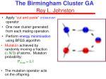 the birmingham cluster ga roy l johnston