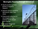 meningitis passing through unnoticed