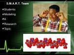 s m a r t team