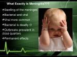 what exactly is meningitis