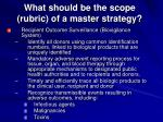 what should be the scope rubric of a master strategy