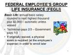 federal employee s group life insurance fegli
