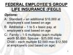 federal employee s group life insurance fegli1