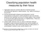 classifying population health measures by their focus
