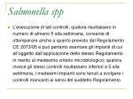 salmonella spp1