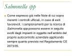 salmonella spp2