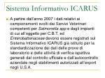 sistema informativo icarus1