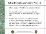 rabies prevention control protocol9