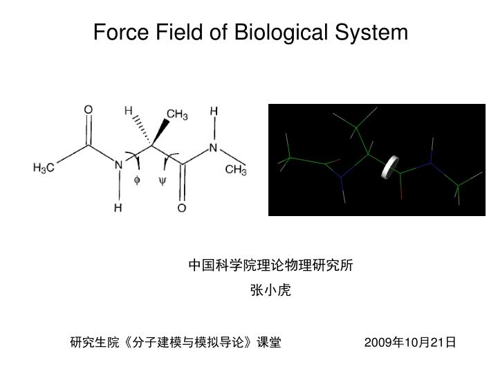 force field of biological system n.