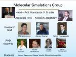 molecular simulations group
