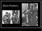 black panthers2