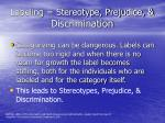 labeling stereotype prejudice discrimination