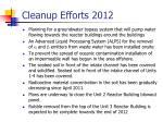 cleanup efforts 2012