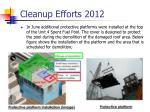 cleanup efforts 20121