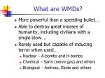 what are wmds