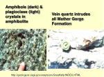 amphibole dark plagioclase light crystals in amphibolite