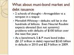 what about muni bond market and debt issuance