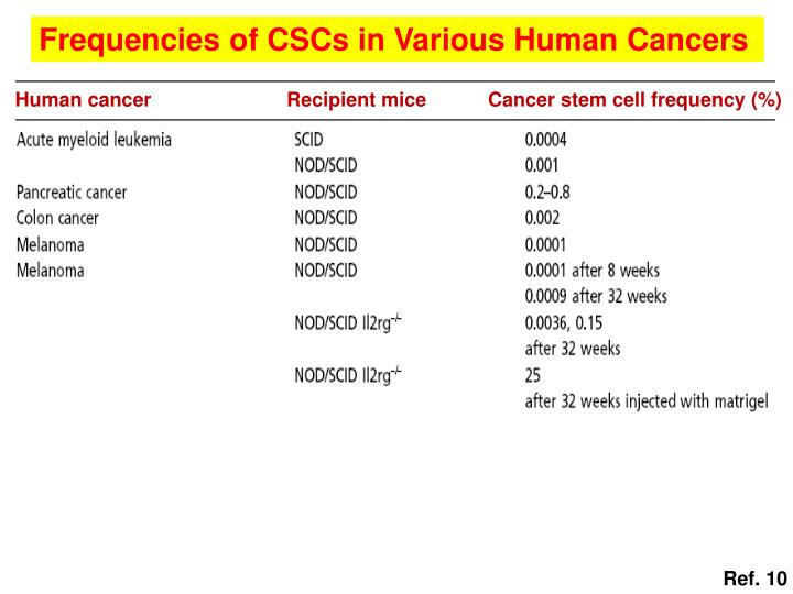Frequencies of CSCs in Various Human Cancers