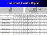individual faculty report