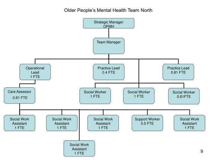 Older People's Mental Health Team North