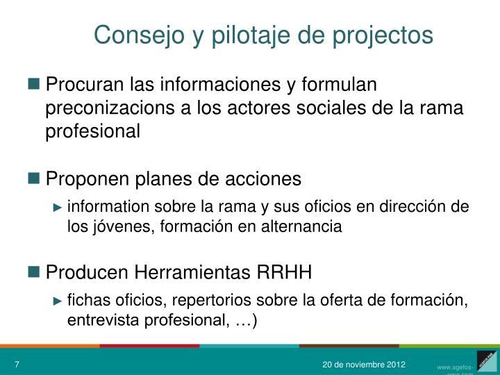 Consejo y pilotaje de projectos