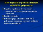 how regulatory proteins interact with rna polymerase