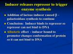 inducer releases repressor to trigger enzyme synthesis