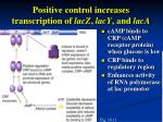 positive control increases transcription of lacz lacy and laca