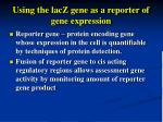 using the lacz gene as a reporter of gene expression