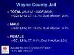 wayne county jail
