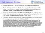 audit framework principles
