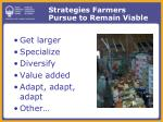 strategies farmers pursue to remain viable
