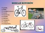 rodzaje rower w